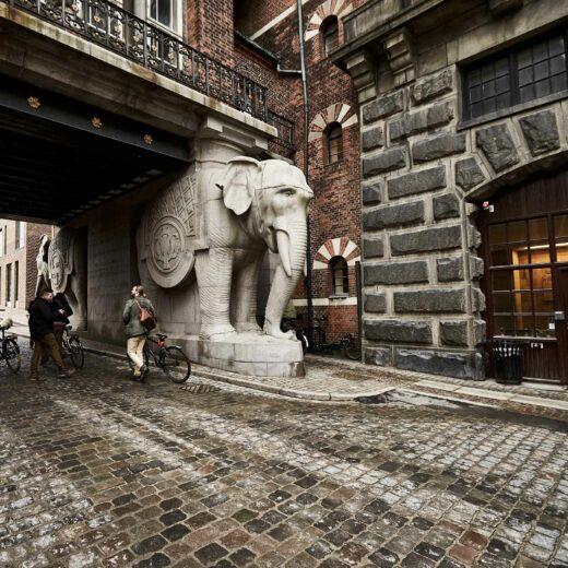 Elefanterne ved Laura Hus