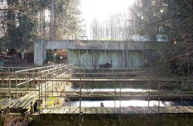 Ålebækken Ruinpark før-foto