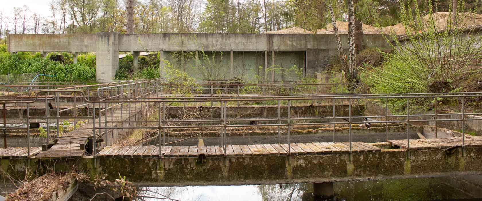Ålebækken Ruinpark